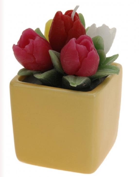 Kerzen im Topf Motiv Kerzen Rosen 110 x 60 mm