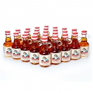 Alpenmax Original Jaga-tee Konzentrat 25 Portionsflaschen 0,04 l Jagatee 40% vol.