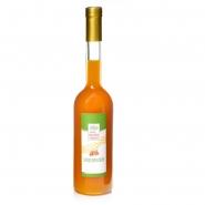 Sanddornlikör Natur 500 ml Flasche 17% vol.