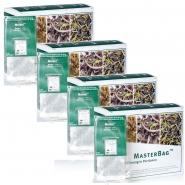 Marani Grüner Tee MasterBag Glas-Portion SET 6er Pack 25 x 1,5g